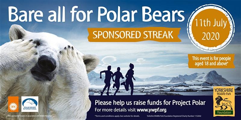 bare all for polar bears